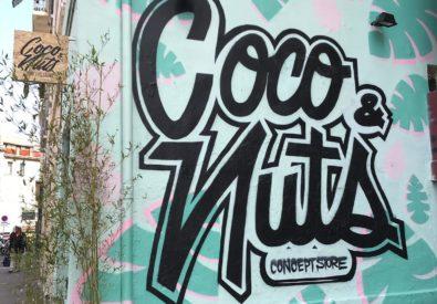 Coco & Nuts Concept ...